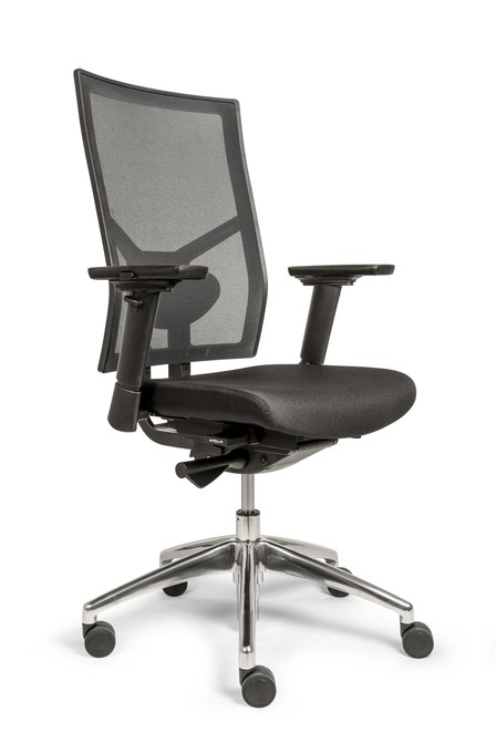 Deskchair E-Norm Edition (English Version)