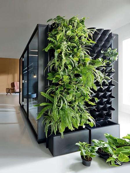 HUSH Green Walls